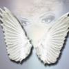 Malakim – Os Arcanjos e Anjos