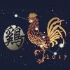 2017 – O Ano do Galo de Fogo Yin