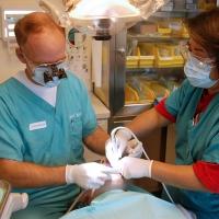 Implante dentário em diabéticos