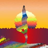 II Festival de Yoga de Araxá