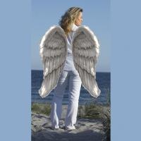 Uma vida dourada com ajuda do seu anjo