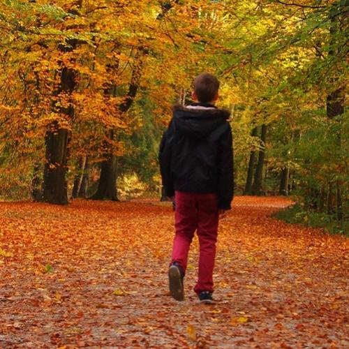 Descobrindo o caminho, a verdade interior...