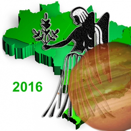 2016: Um ano para o Brasil crescer