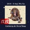 2018 – O Ano Wu Xu (Cachorro de Terra Yang)
