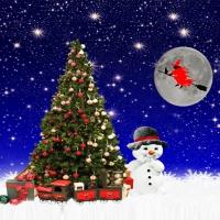 Solstício de Verão – O Natal das Bruxas