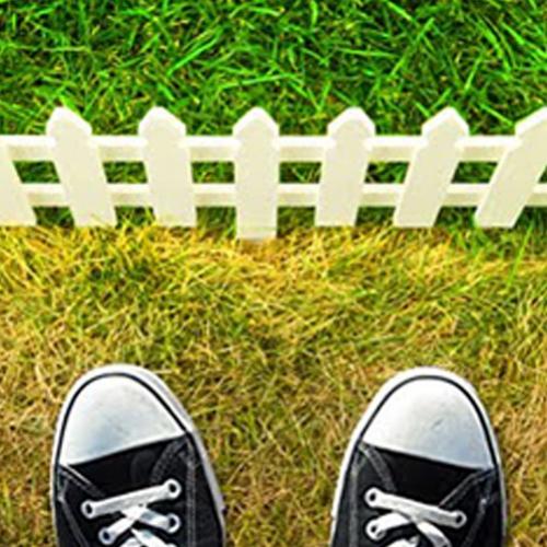 Inveja? Saiba que a grama do vizinho nem sempre é mais verde!