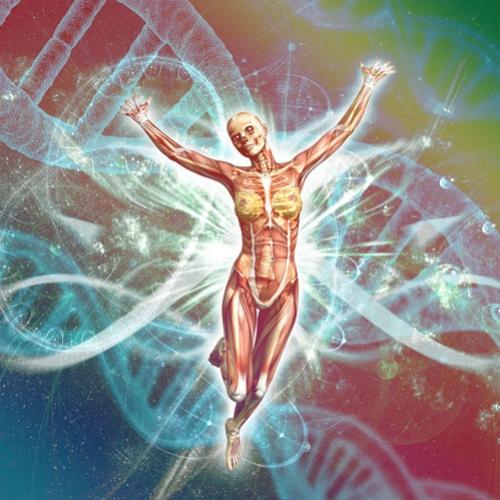 A Ciência Ayurvédica